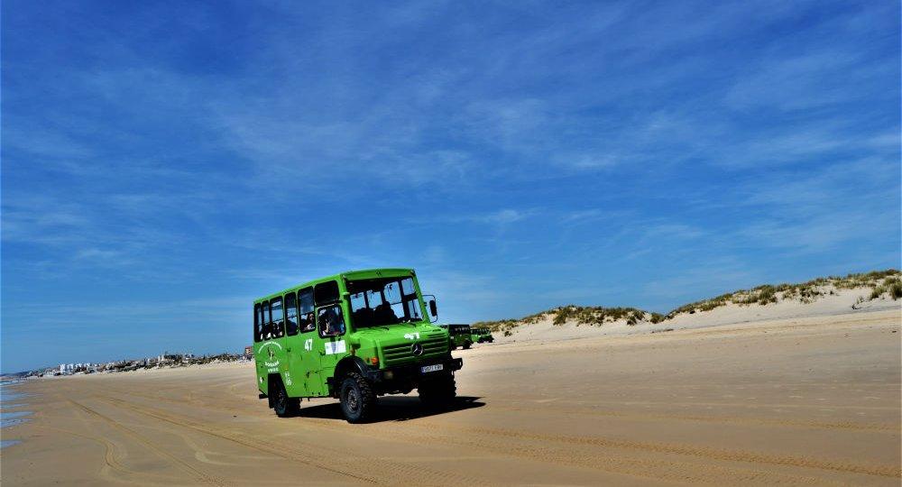 Visita escolar Doñana Sur